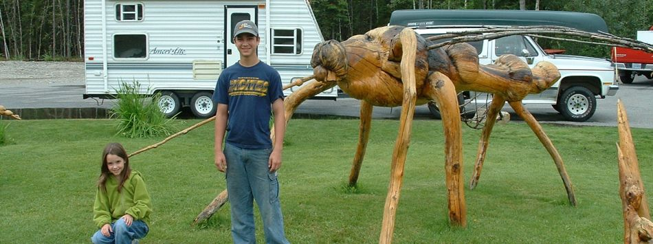 Knotty mosquito